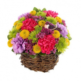 Spring Basket Surprise Arrangement