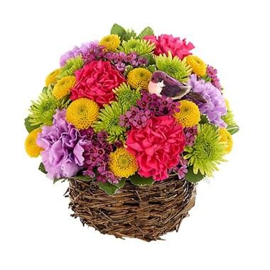 Spring Basket Surprise Arrangement