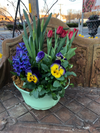 Spring blooms from Roma Florist