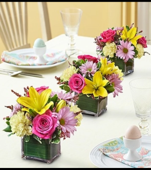 Spring Centerpiece Trio  in Croton On Hudson, NY | Cooke's Little Shoppe Of Flowers