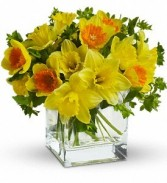 Daffodil Dreams Spring Bouquet