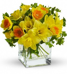 Daffodil Dreams Spring Bouquet in Whitesboro, NY | KOWALSKI FLOWERS INC.