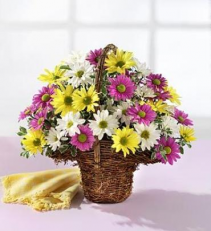 Spring Daisy Basket Arrangement