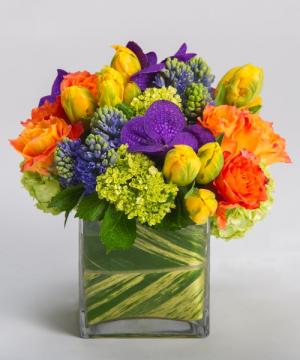 Spring Delight   in Oakville, ON | ANN'S FLOWER BOUTIQUE-Wedding & Event Florist