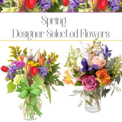 Spring-Designer's Choice