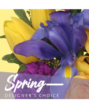 Spring Designer's Choice in Tracy, CA | LITTLE FLOWER SHOP