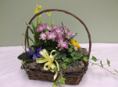 SPRING ENGLISH GARDEN PLANT BASKET