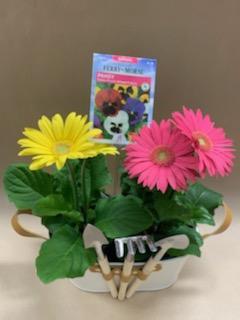 Spring Fling Garden Kit