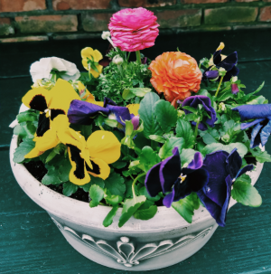 Spring flower planter flowering plants outdoors in Pawling, NY | PARRINO'S FLORIST