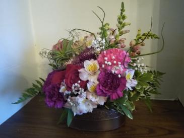 Spring flowers with keepsake air plants spring flowers & air plants