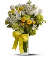 Spring For Joy HFWEB522