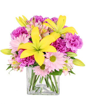 Spring Forward Arrangement in Kinder, LA | Brooks Flowers & Gifts dba Buds & Blossoms