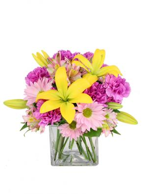 Spring Forward Arrangement in Farmland, IN | AARO'S FLOWERS