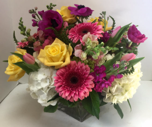 Spring Fun Cube vase in Northport, NY | Hengstenberg's Florist