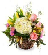 Spring Garden Basket Fresh cut Roses, Hydrangea, and Tulips in a basket