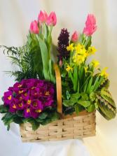 Spring Garden Basket Planter Basket