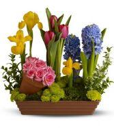 SPRING GARDEN STYLE CUT FLOWER ARRANGEMENT