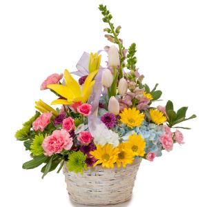 Spring has Sprung Basket in Spring, TX | TOWNE FLOWERS