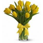 Spring has Sprung Bouquet Tulips EF87