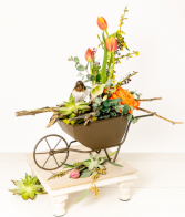 Spring in a barrow Custom arrangement