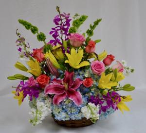 Spring in a Basket Basket arrangement in Coral Springs, FL | Hearts & Flowers of Coral Springs