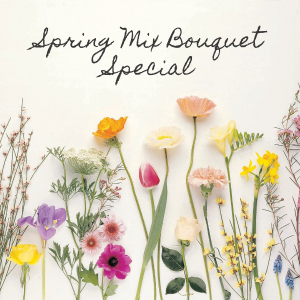 Spring Mix  Special in Atascadero, CA | ARLYNE'S FLOWERS & ETC.