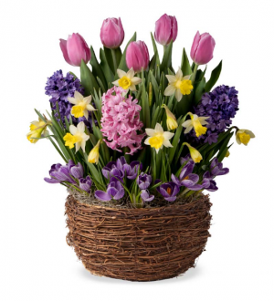Spring occasions   in Oakville, ON | ANN'S FLOWER BOUTIQUE-Wedding & Event Florist