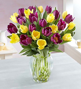 SPRING PASSION TULIPS