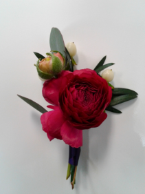 Spring Ranunculus  Boutonniere