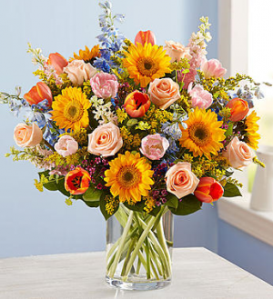 Spring Sensation™ Arrangement in Croton On Hudson, NY | Cooke's Little Shoppe Of Flowers