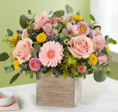 Spring Sentiment™ Arrangement