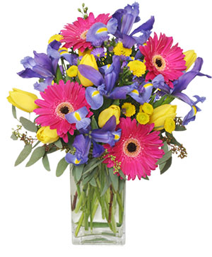 Spring Smiles Arrangement in Chicopee, MA | GOLDEN BLOSSOM FLOWERS & GIFTS