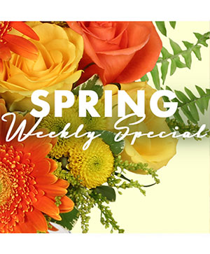 Spring Special Designer's Choice in Lancaster, CA | GONZALEZ FLOWER SHOP