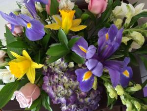 Spring Special  in Tampa, FL   Blooms & Bouquets