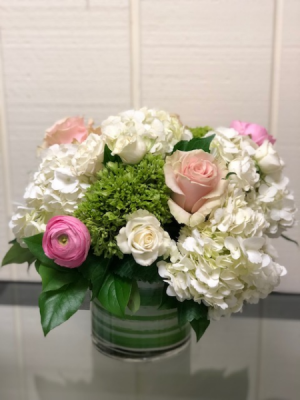 Spring Splendor Arrangement Dense Cylinder in Fairfield, CT | Blossoms at Dailey's Flower Shop