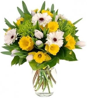 SPRING SUNBURST BOUQUET in Garrett Park, MD | ROCKVILLE FLORIST & GIFT BASKETS