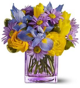 Spring Sunlight 415 Vase arrangement