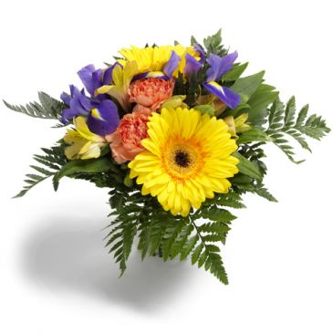 Spring Surprise Cut Flower Bouquet