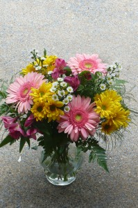 Spring Thoughts of You Long Lasting Daisies, Gerbera, and Alstromeris