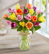 SPRING TIME TULIPS Vase Arrangement