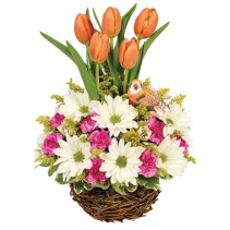 Spring Tulip Garden Arrangement