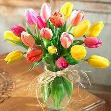 Tulips Fields  Vase Arrangement