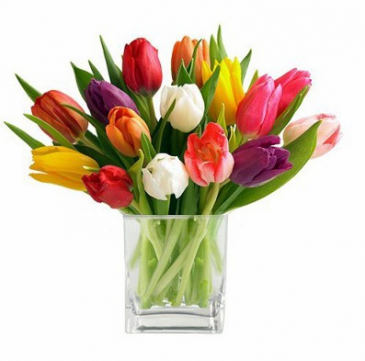 Spring Tulips  **LOCAL DELIVERY ONLY**