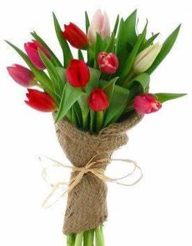 Spring Tulips & Burlap