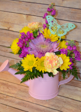 Spring Watering Can - **Can Color will vary