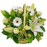 WHITE  SPRING  BASKET   ARRANGEMENT