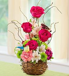 Springtime Bird's Nest of Blooms Flowers to Tweet About! in Gainesville, FL   PRANGE'S FLORIST