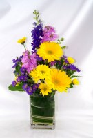 Springtime Splash Vase Arrangement
