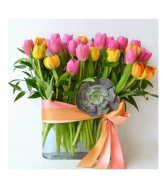 SpringTime Tulip Garden Black Iris Florist