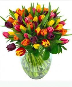 Springy Tulip Vase Vased Arrangement Semi-Compact
